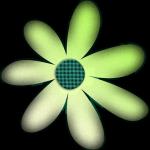 flores 103