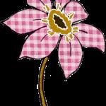 flores 108