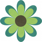 flores 113