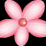 flores 116