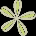 flores 118