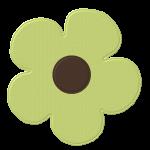 flores 120