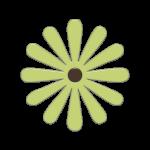 flores 126