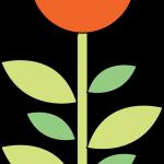 flores 135