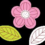 flores 149