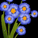 flores 152