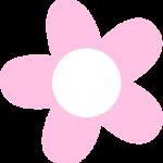 flores 167