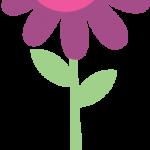 flores 185