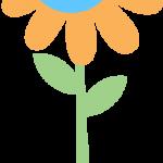 flores 193