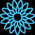 flores 202