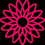 flores 203