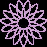 flores 204