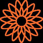 flores 205