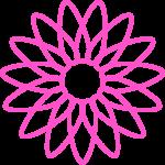 flores 206