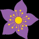 flores 213