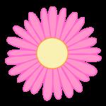 flores 218
