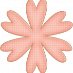 flores 51