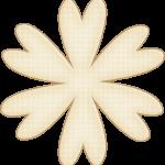 flores 52