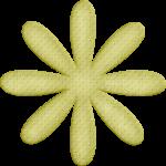flores 54