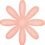 flores 57
