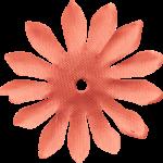 flores 62