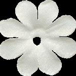 flores 65