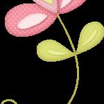 flores 81