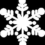 frozen 14