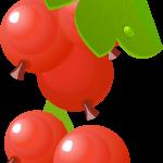 fruta 2