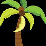hawaiano 20
