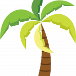 hawaiano 3