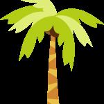 hawaiano 9