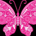 mariposas 21 1