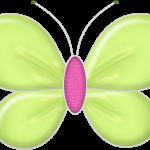 mariposas 37 1