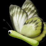 mariposas 40 1