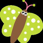 mariposas 56 1