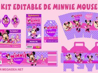 kit minnie mouse