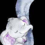 BabyElephant Purple 01