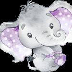 BabyElephant Purple 03
