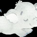 CuteElephantBoy 06