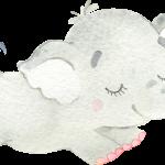 CuteElephantGirl 06