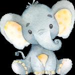 Elefante Naranja