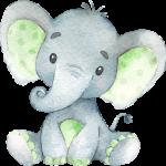 Elefantito Verde