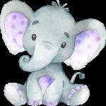 ElephantColors 02