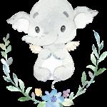 Lindo Elefante CuteElephantBoy 01