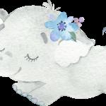 Lindo Elefante CuteElephantBoy 03
