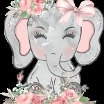 elefantita flores