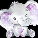 elefantito morado