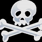 mickey pirata 17