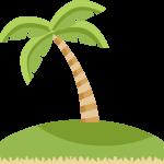 mickey pirata isla